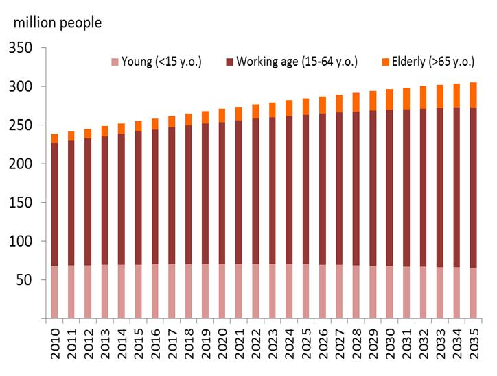 Demographic bonus, rising middle-class Back Indonesia is currently enjoying a demographic dividend era.