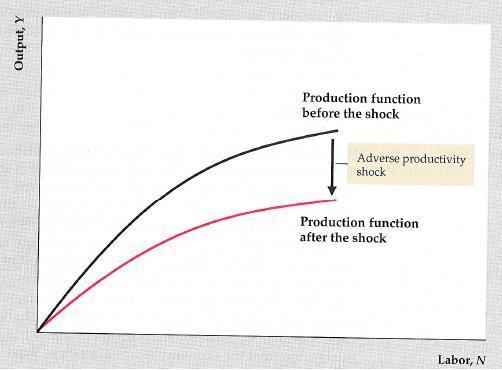 Impact of bad productivity shock (weather, high energy prices,