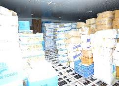 2 Cold Storage Warehousing Our cold storage warehousing service provides temperature controlled warehousing Institutional We provide Cold Storage facility to large F&B companies such as Al-kabir,