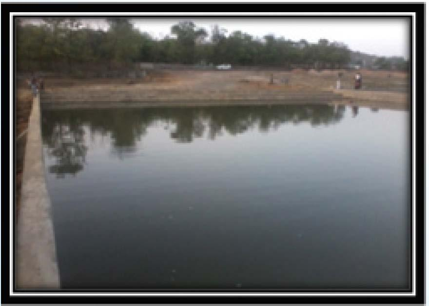NCL has also constructed 4 ponds and 1 check dams in different villages around NCL.