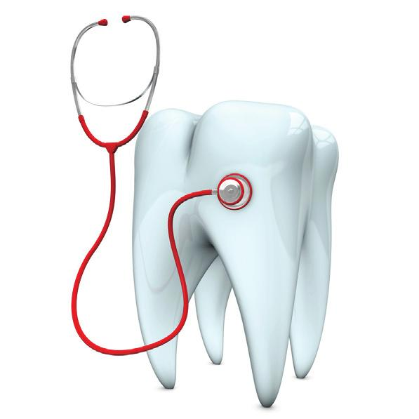This is a brief summary of your dental premiums and benefits. Dental Core Biweekly Dental Premiums Tier Dental Core Dental Plus Associate Only $0 $4.86 Associate + 1 $0 $9.72 Family $0 $15.