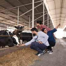 - India s most modern dairy farm with the finest international equipments