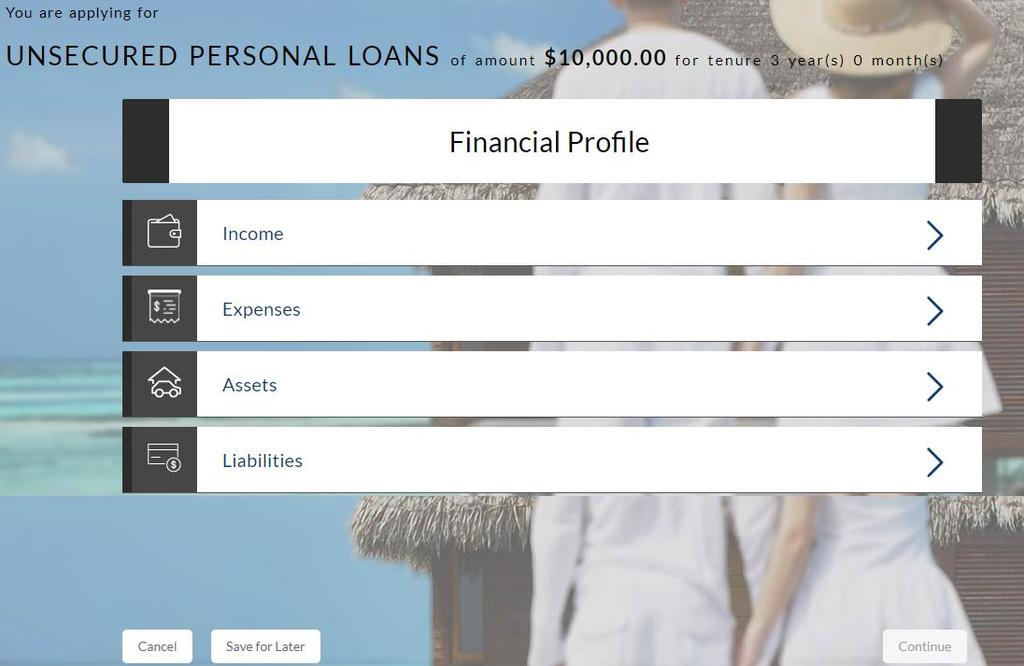 3.10 Financial Profile Enter the appropriate details in the relevant sections.