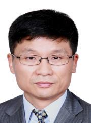 Group Chief Development Officer Lai