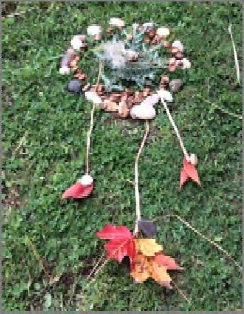 Participants explore a natural site, as a member of a team, and create art from found materials. They write and perform poetry. This program is appropriate for students of all abilities.