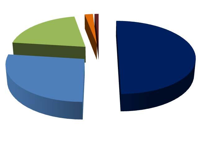 Estimated Global Market Share Revenue Market Share of Various Geographies (calendar year 2011) 20% EMEA 2% Camada 1% Latin America 50% US 27% Asia Pacific Source: The International Association of
