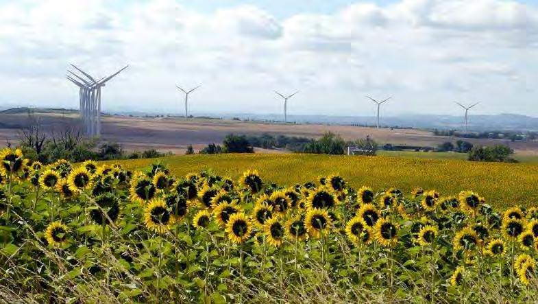 In Brazil, the Group takes a similar approach to that used in France: wind farms are located in low-population areas and are installed at a minimum distance of 500 metres from houses in keeping with